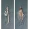 MAISON JEANNE LANVIN - DEUX DESSINS de MODELES - crayon et gouache - Circa 1925 H. 48 - L. 21 cm - 496 €